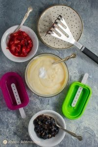 tools for coconut yogurt popsicles