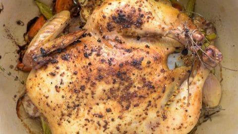 chicken roasted with lemon-mustard glaze in dutch oven
